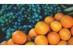 Виноград и апельсины в борьбе с ожирением и диабетом